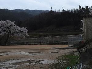 DSCN0037_tori.jpg
